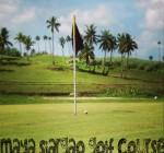 golfg6